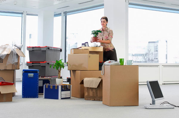 Office Removalists